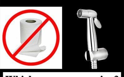 Bum Gun vs Toilet Paper – Which one are you using in 2020?
