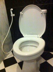 the-bum-gun-bidet-sprayer-beats-clogged-toilets